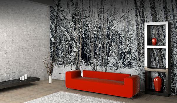 vision-cameleon-murales-salon4